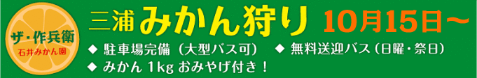 banner_mikangari-e1424354957925