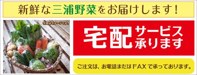 三浦新鮮野菜