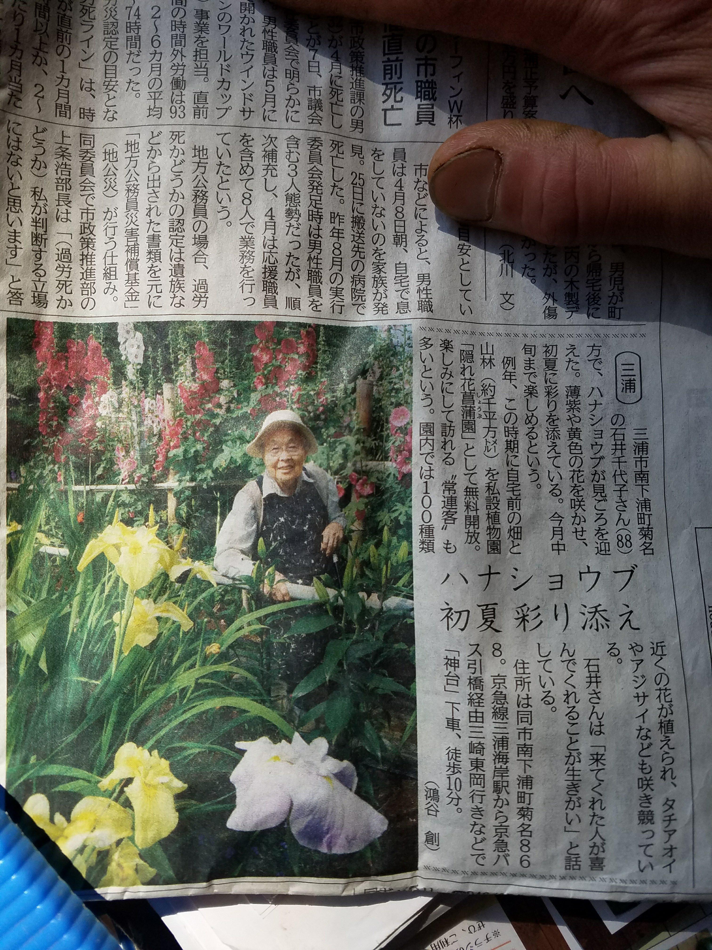 神奈川新聞さんに載せて頂きました