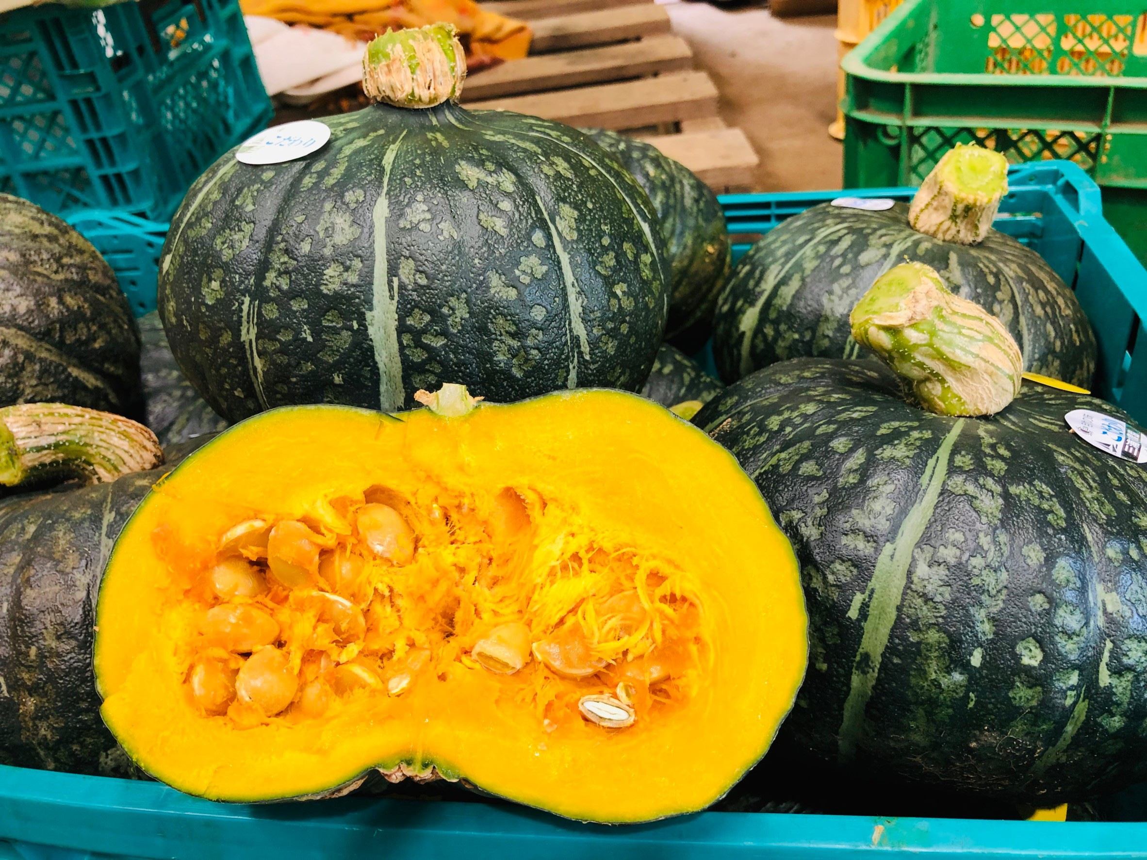 ホクホクの完熟かぼちゃ販売開始!